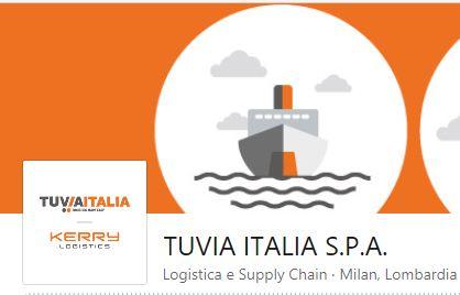 Linkedin Tuvia Italia