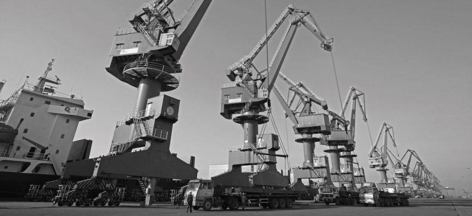 project cargo tuvia